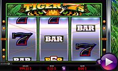Tiger 7s